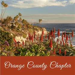 Orange County Virtual Meeting
